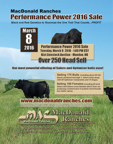 Click for more info on Performance Power 2015