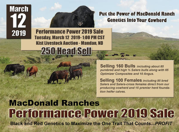 Macdonald Ranches: Performance Power 2019 Sale
